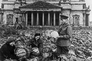 Разработки учёных, которые помогли выстоять Ленинграду и сохранить жизни людей