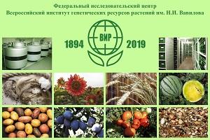 Международная конференция «125 лет прикладной ботаники в России» 25 – 28 ноября 2019 года, Санкт-Петербург, Россия