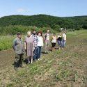 На Дальневосточной опытной станции ВИР продолжится  углубленное изучение дикого винограда и овощных культур